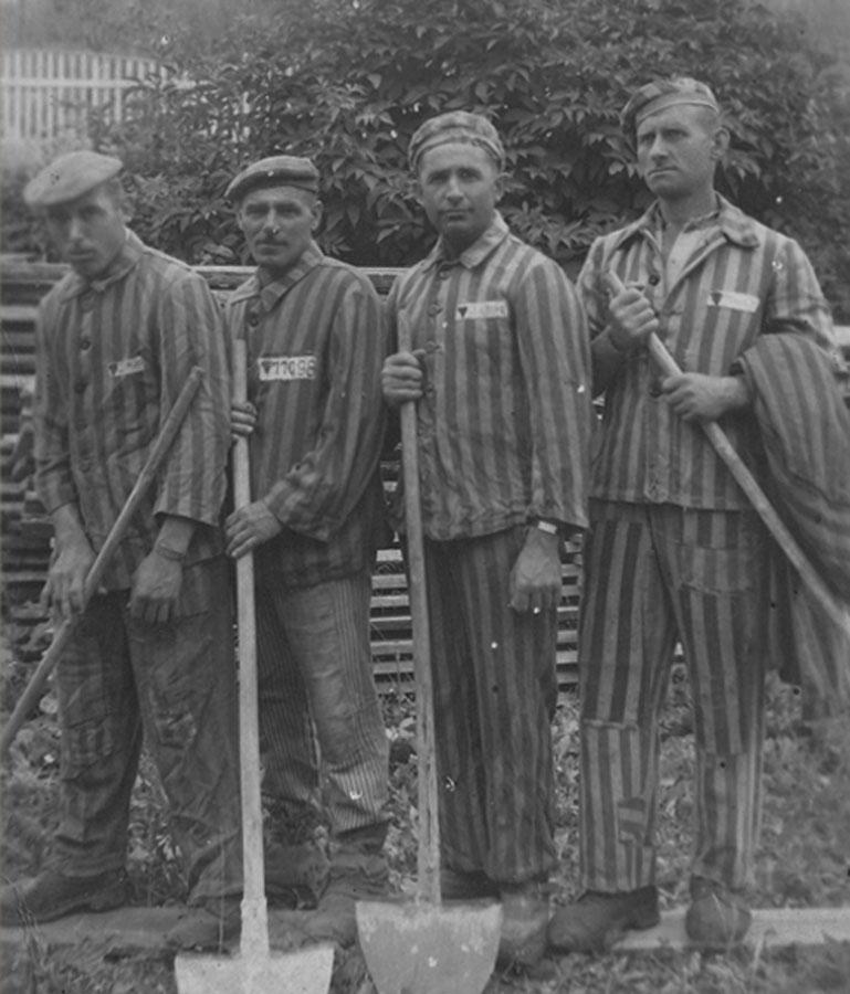 ujetniki